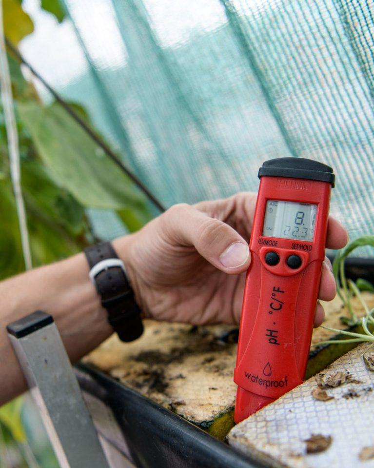 Mit dem Thermometer wird die Temperatur des Beetes überprüft.