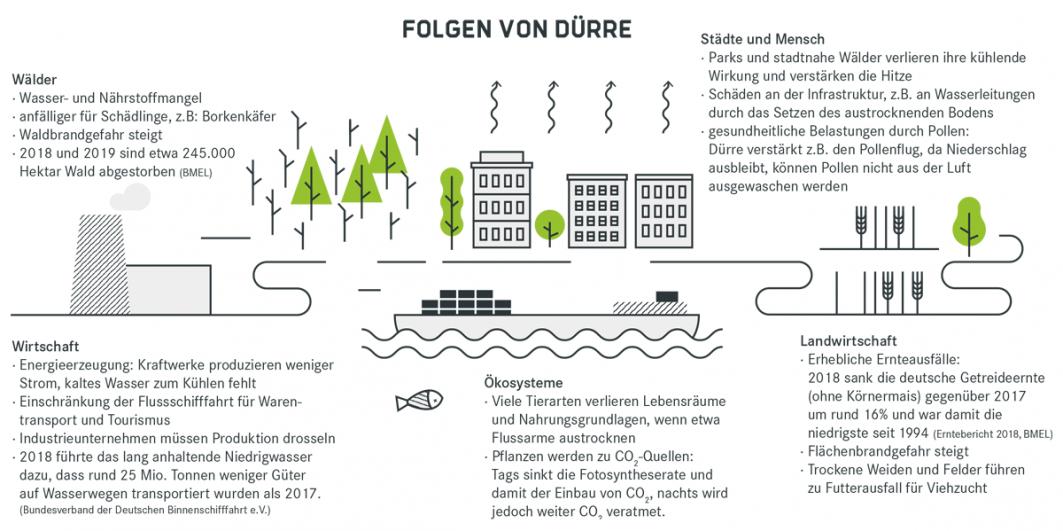 Infografik zu den Folgen von Dürre